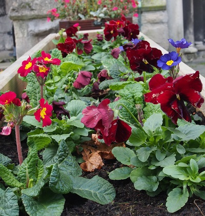 Flower trough at Holy Trinity