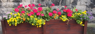 Holy Trinity flower trough