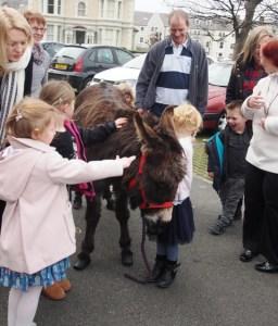 Palm Sunday donkey