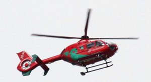 8 people injured by loose horse at Pembrokeshire Show