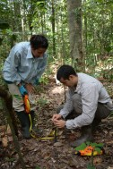 Leandro and Annaïs putting the 50 m tape measures to find out where exactly to put the PVC stakes