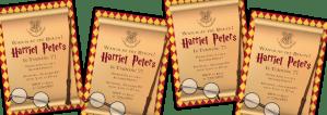 Harry Poter Themed Birthday Party