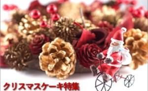 2018年 クリスマスケーキ特集