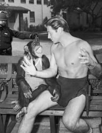 Lt John Pike pepper spraying cop spraying Tarzan and Cheeta