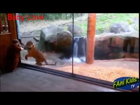 Funny animal fails compilation || Animals jokes fails kids at the zoo ||Funny Compilation 2015