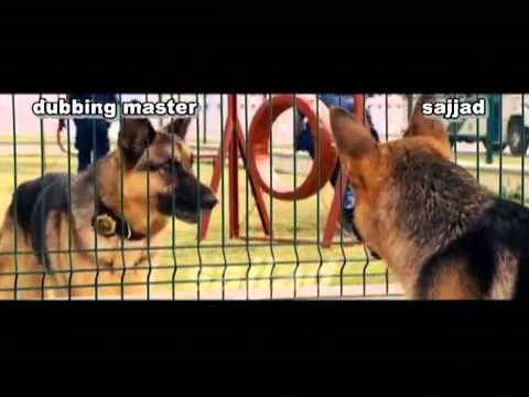 Latest Funny Video With Dogs  Punjabi Dubbing With Dog