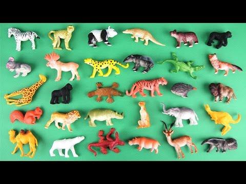Animals Learn For Kids! Learning 30 Safari Wild Animal Funny video. Zoo Best animal Preschool Toys.