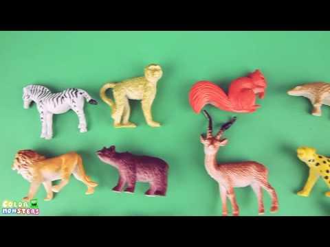 Animals Learn For Kids! Learning 30 Safari Wild Animal Funny video. Zoo Best animal Presch
