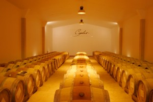 Cigalus is Gerard Betrand Wines flagship biodynamic estate in the Languedoc.