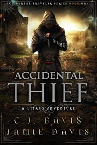 accidental thief ebook cover