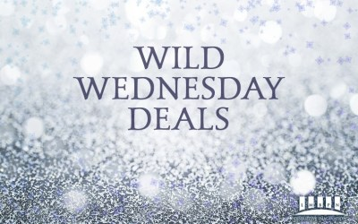 Precarious Wild Wednesday February 24, 2021