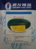 Benih Semangka Inul, SF 5656 F1, Semangka SF 5656, KYS, Semangka Kuning, Known You Seed, Terbaru, Jual, Harga Murah, LMGA AGRO