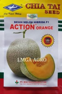 Melon Anti Virus, Melon Orange, Action Orange, Cap Kapal Terbang