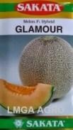 Jual Bibit Melon Glamour F1-Sakata