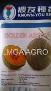 Jual Bibit Melon Golden Aroma F1-Known You Seed