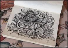 The lovely drawings of Irina Vinnik
