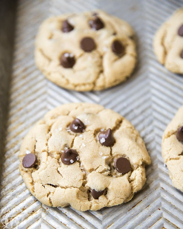 This peanut butter chocolate chip cookie recipe makes the perfect amount of cookies for 2 people, just 4 tasty peanut butter cookies stuffed full of chocolate chips in every bite.