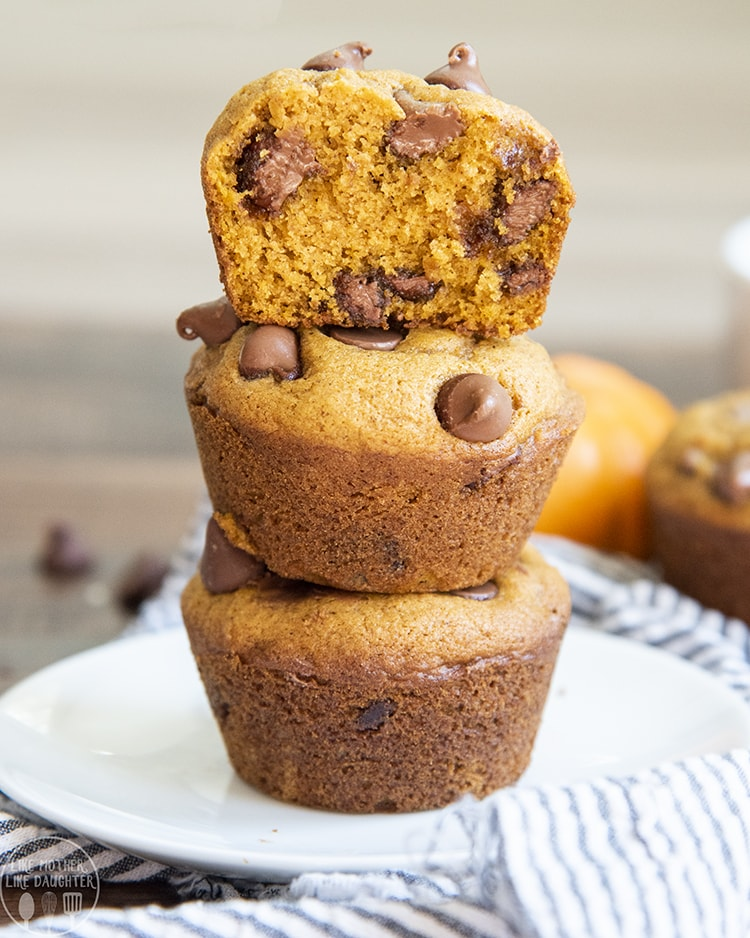 Pumpkin Muffins packed full of chocolate chips