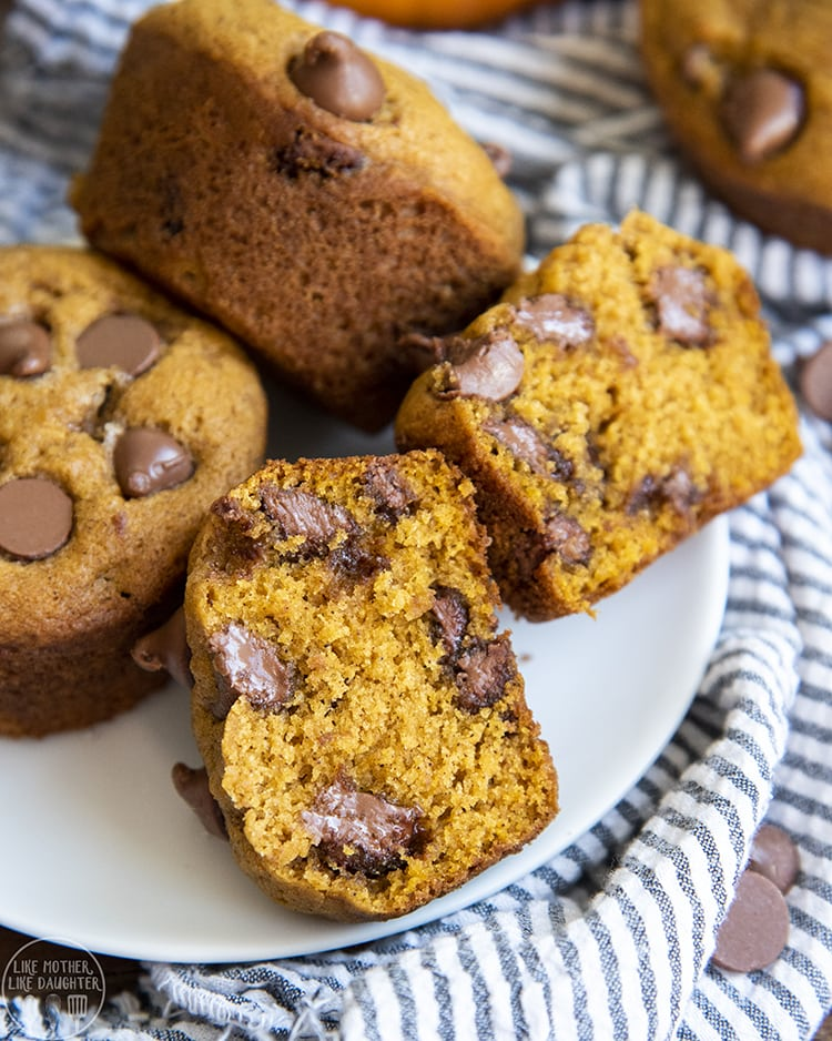Pumpkin Muffins with Chocolate Chips in every bite