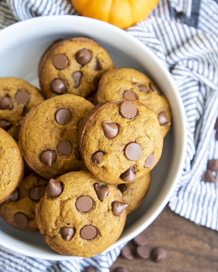 A bowl of pumpkin chocolate chip muffins