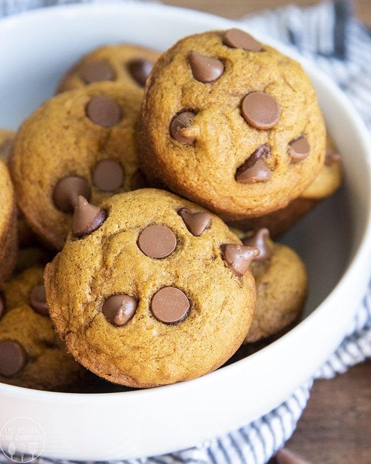 Moist pumpkin chocolate chip muffins