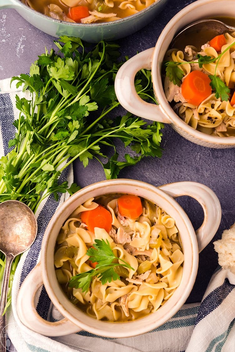 Chicken Noodle Soup with carrots, celery, lots of chicken and noodles.