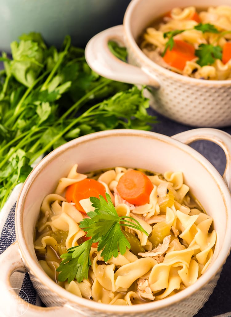 The perfect bowl of chicken noodle soup