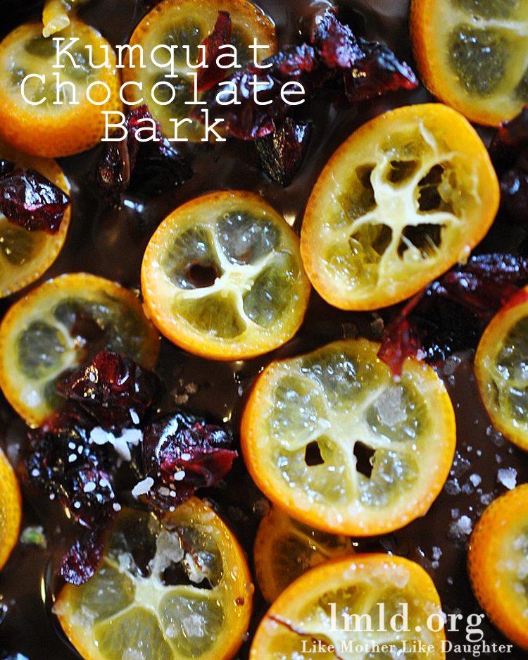 kumquat chocolate bark3