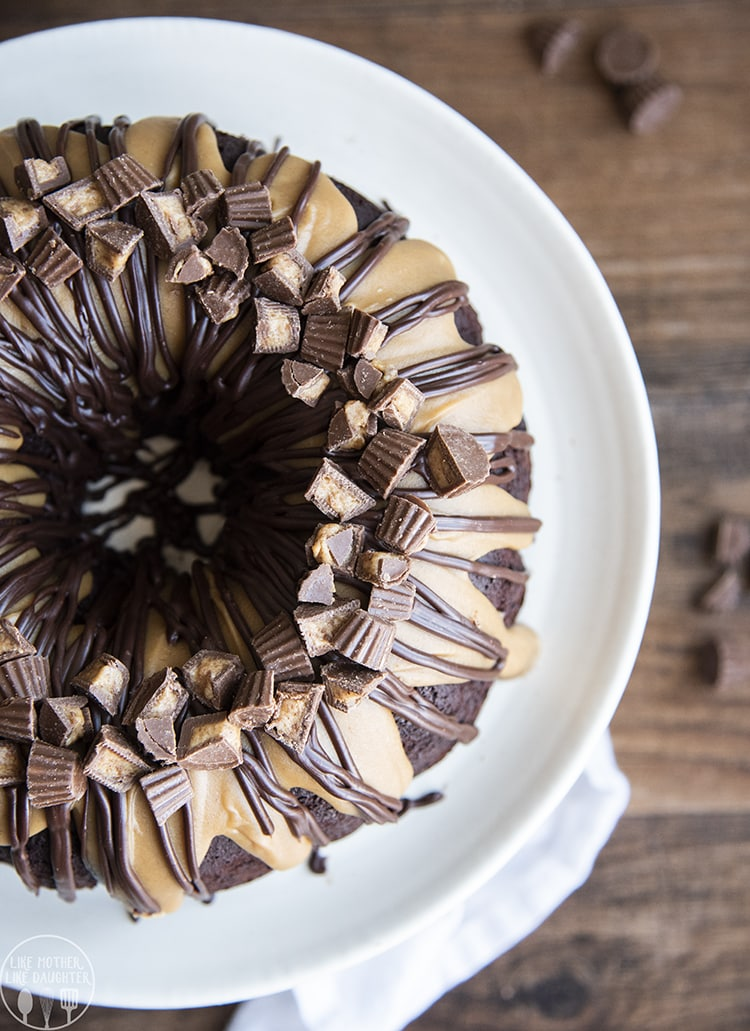Chocolate Peanut Butter Swirl Cake