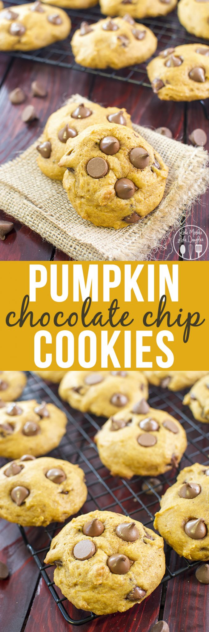Pumpkin Chocolate Chip Cookies - These are the perfect soft baked fall cookies full of pumpkiny goodness and stuffed full of chocolate chips.