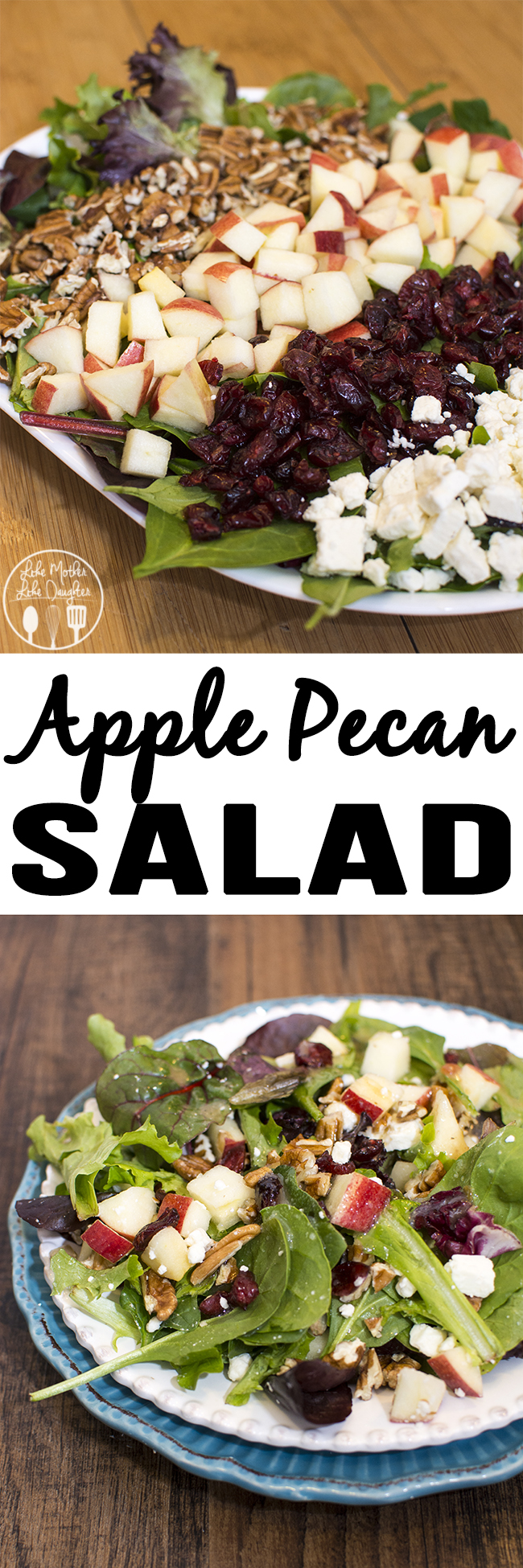Apple Pecan Salad - This delicious and flavorful salad combines crisp apples, sweet dried cranberries, salty feta and crunchy pecans all tossed together with leafy greens and topped with your favorite salad dressing..