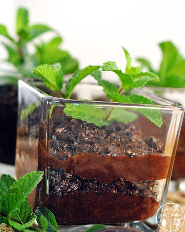 "Flower pot chocolate pudding - These flower pot chocolate puddings are the simplest fun dessert. Layered ""dirt"" of chocolate pudding with crushed Oreos, a planted ""flower"" of mint leaves."
