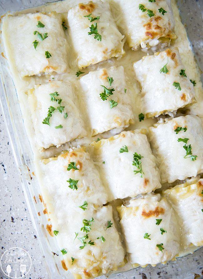 chicken alfredo lasagna roll ups 5
