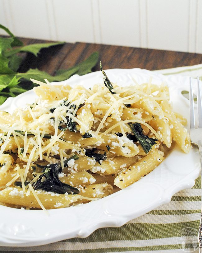 penne pasta with dandelion greens 4
