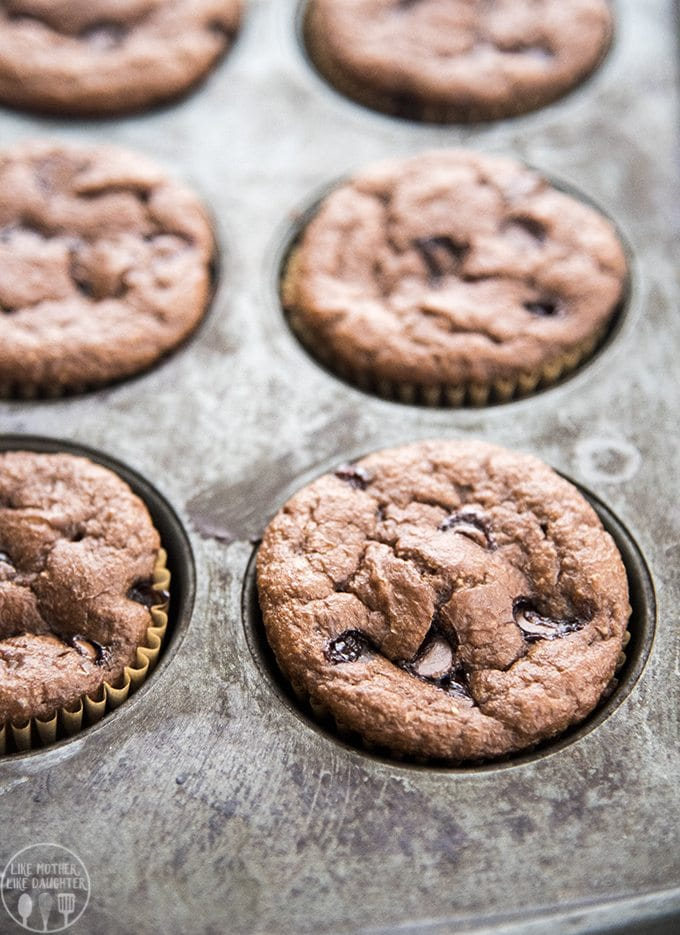 Chocolate Banana Blender Muffins