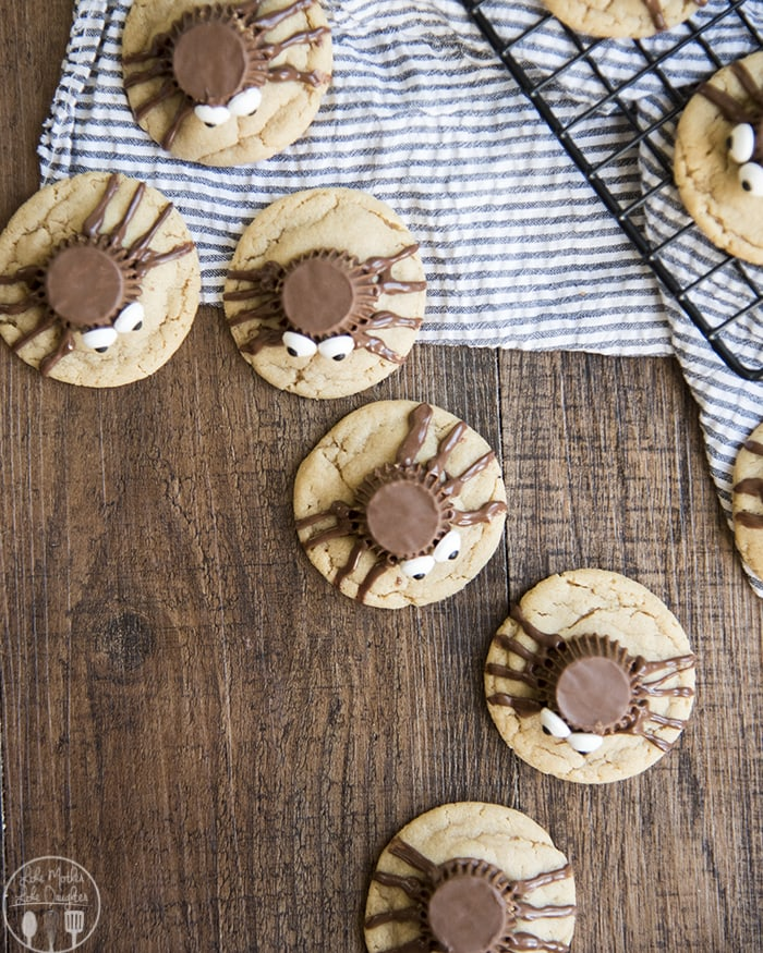 Chocolate Peanut Butter Spider Cookies