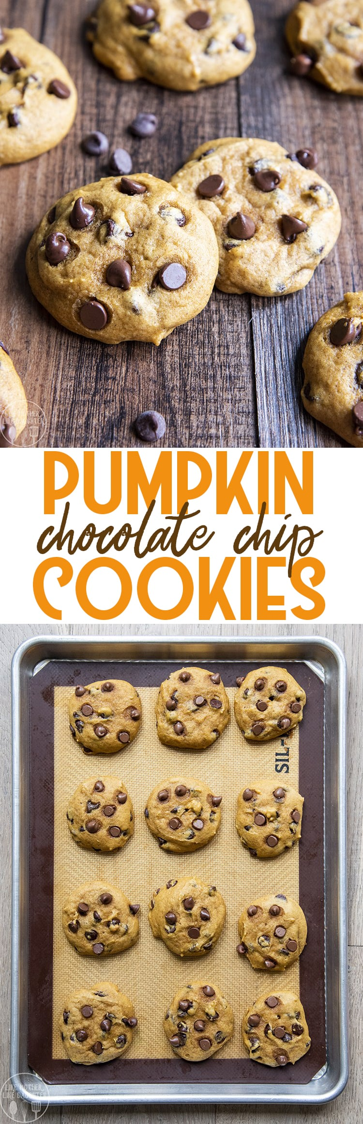 These pumpkin chocolate chip cookies are are soft, moist, and loaded with the perfect pumpkin flavor. They're the best fall cookies.