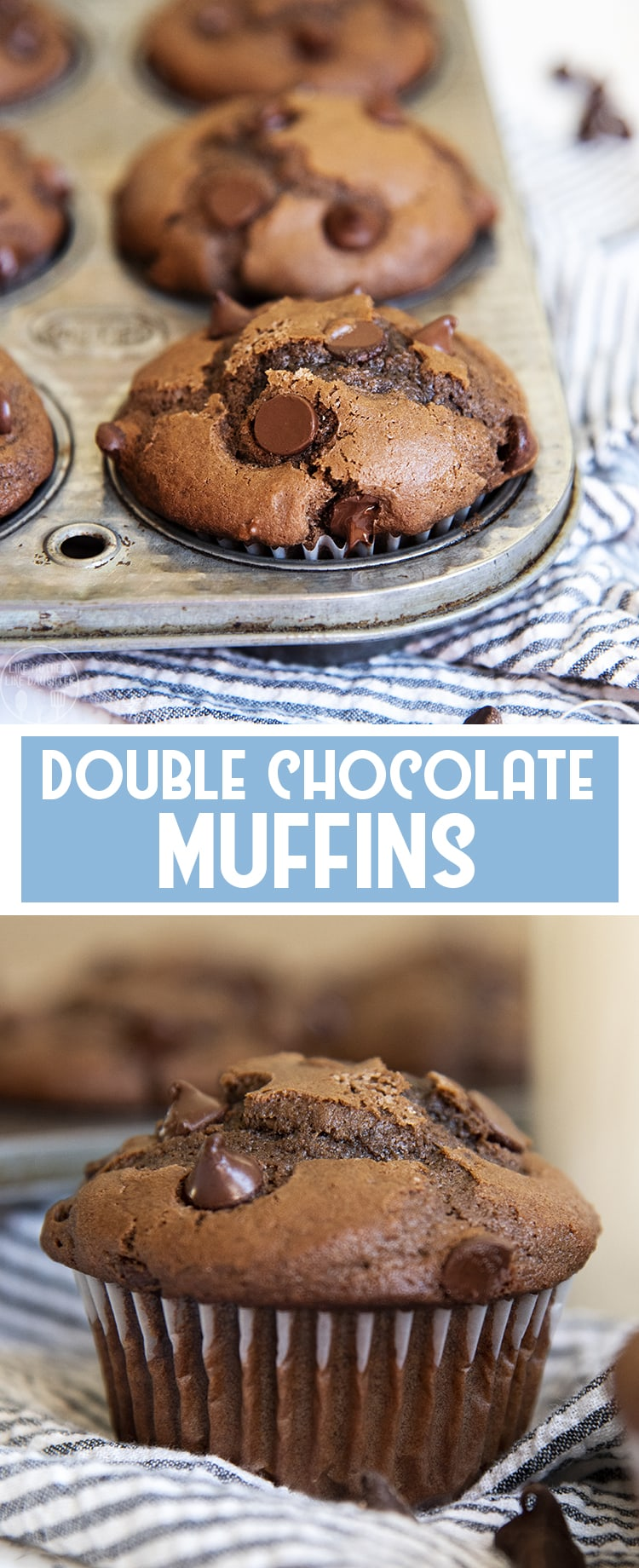 These moist, rich, and delicious double chocolate muffins are bursting with chocolate in every bite!