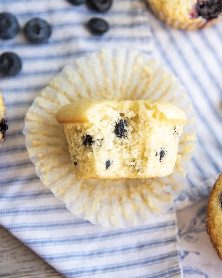 A bite out of a Blueberry Muffins made with dried blueberries