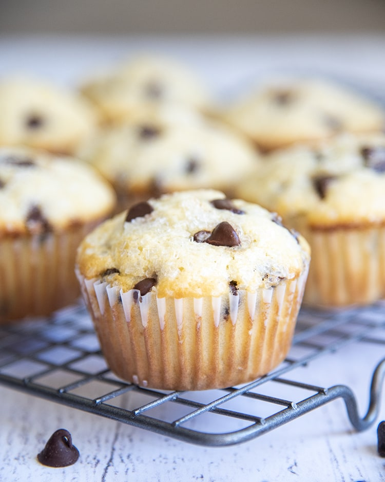 These chocolate chip muffins have a classic muffin batter, packed full of chocolate chips and topped with coarse sugar on top. They're as good as you'd get in a bakery.