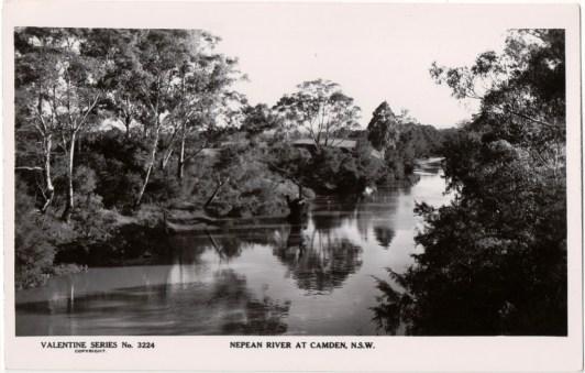 Nepean River, Camden, NSW. Postcard company: Valentine's No. 3224