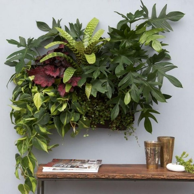 11 Fabulous Wall Planters Indoor Living Wall Ideas 20