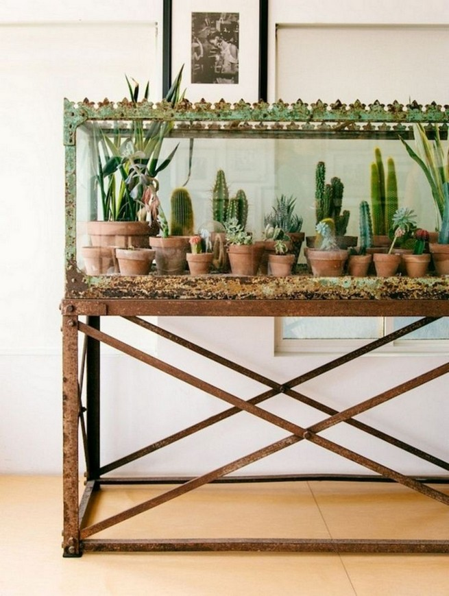 11 Lovely Small Cactus Ideas For Interior Decorations 03
