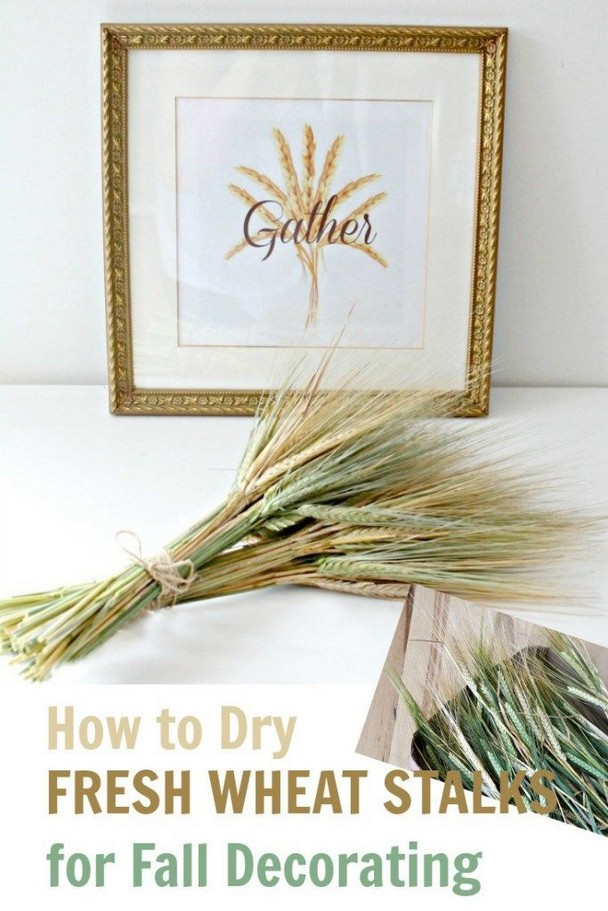 12 Cheap Crafts Diy Home Decoration Ideas Fall 11