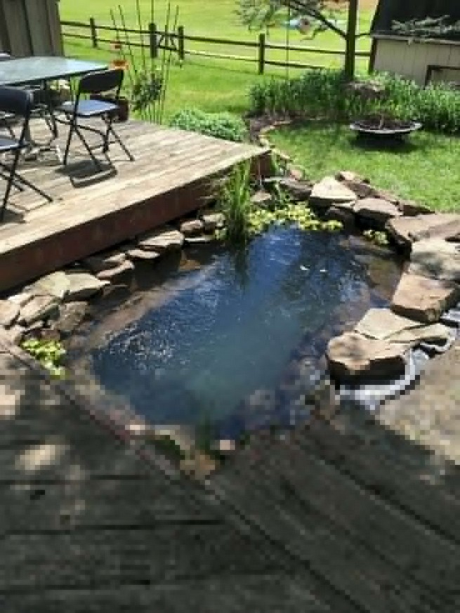19 Gorgeous Backyard Ponds Water Garden Landscaping Ideas 09