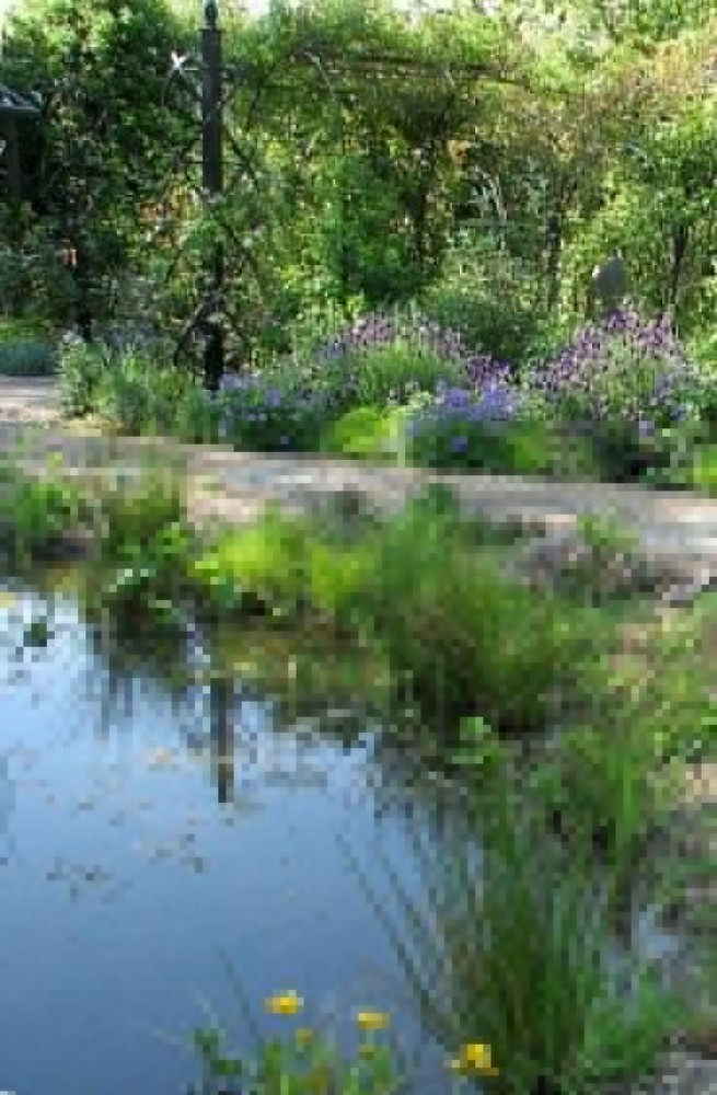 19 Gorgeous Backyard Ponds Water Garden Landscaping Ideas 35
