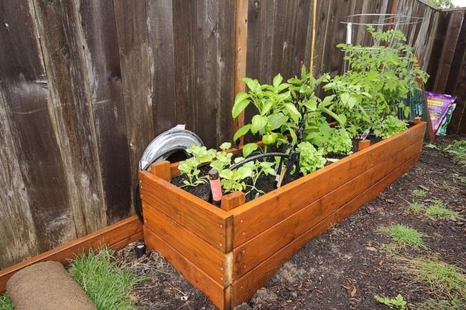 21 Best Container Vegetables Garden Inspirations Ideas 04