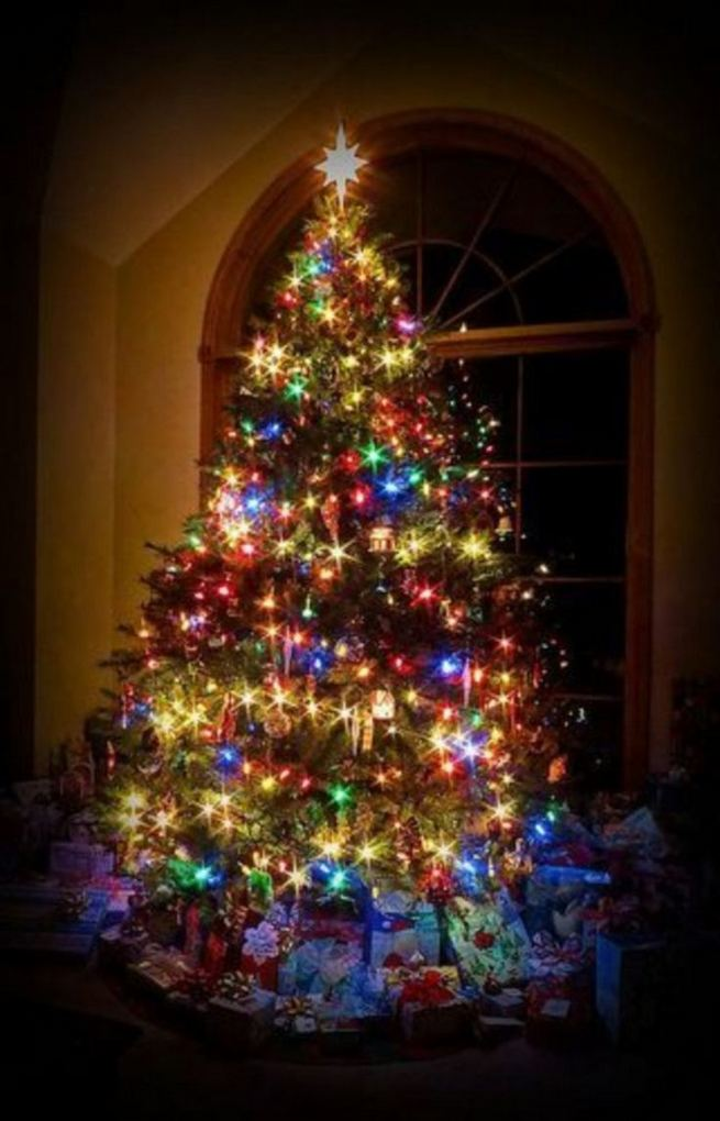11 Pretty Ideas Christmas Tree Themes Home Decor Everyday 39