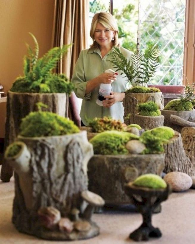 12 Enchanting Fairy Garden Best Ideas 31