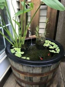 13 Gorgeous Backyard Pond Designs Ideas 14